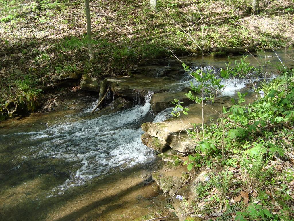 Water Flowing Down Rocks in Creek